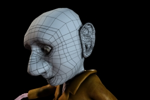 Gnome wireframe head