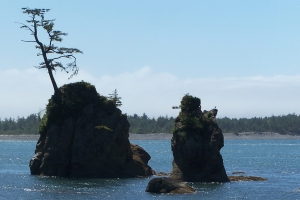 Oregon Coast Wheeler Bay