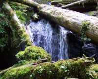 Munson Falls Oregon