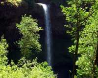 Silver Falls Silverton Oregon