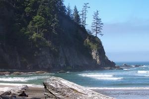 Oregon Coast Oswald West